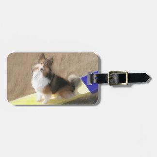 CuteShetland Sheepdog sitting on a teeter Tag For Luggage