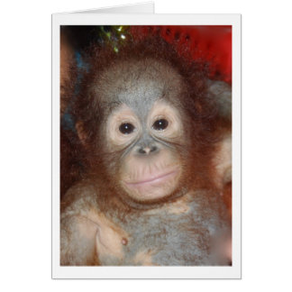 Cutest Baby Orangutan , Great Ape of Borneo Stationery Note Card