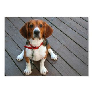 Cutest Beagle Dog Ever Card