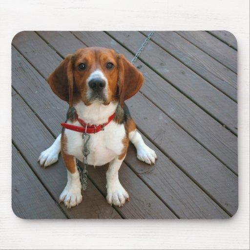 Cutest Beagle Dog Ever Mouse Pad
