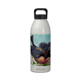 cutest bird with blue eyes flying over flowers reusable water bottles