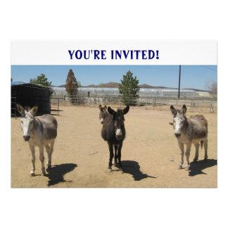 Cutest Birthday Burros Western Custom Invites