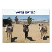 Cutest Birthday Burros Western Invitation
