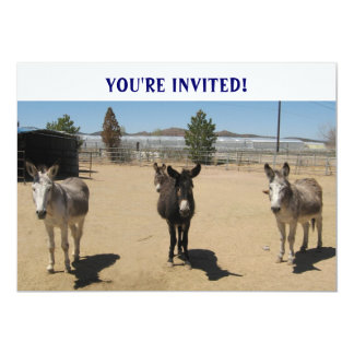 Cutest Birthday Burros Western 5x7 Paper Invitation Card
