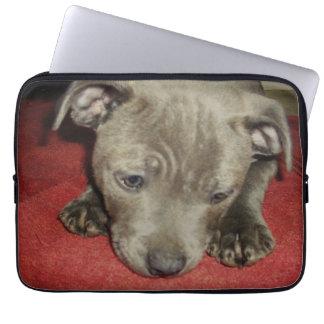 Cutest_Blue_Staffy_Puppy,_13_Inch_Laptop_Sleeve Laptop Sleeve