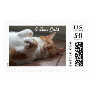 Cutest cat sleeping resting Postage