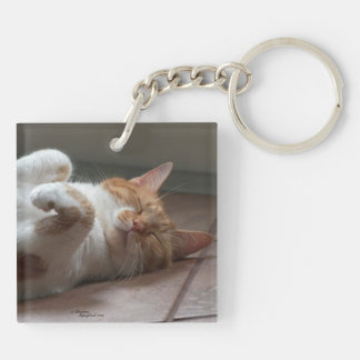 Cutest cats sleeping Keychain