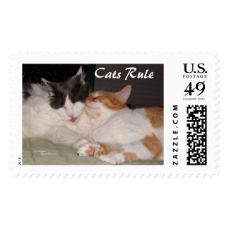 Cutest cats sleeping Postage Stamps
