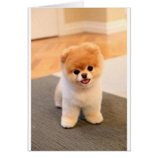 Cutest Dog in the world Card