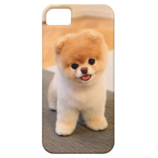Cutest Dog in the world iPhone 5 Covers