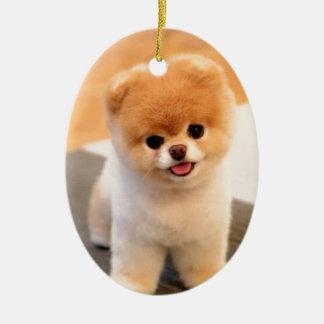 Cutest Dog in the world Ceramic Ornament