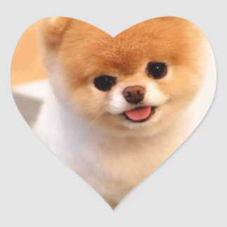 Cutest Dog in the world Heart Sticker