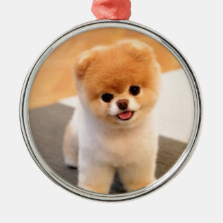 Cutest Dog in the world Metal Ornament