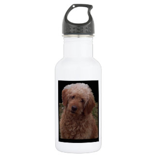 Cutest Dog in the World Stainless Steel Water Bottle