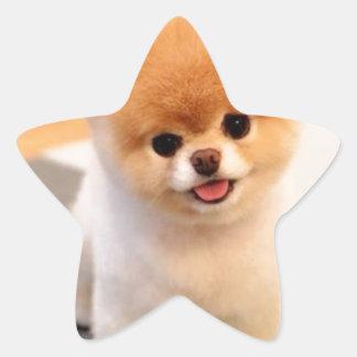 Cutest Dog in the world Star Sticker