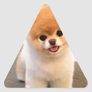 Cutest Dog in the world Triangle Sticker