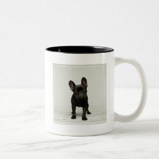 Cutest French Bulldog Puppy Two-Tone Coffee Mug