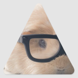 Cutest guinea pig wearing glasses triangle sticker