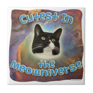 Cutest in the Meowniverse Tile