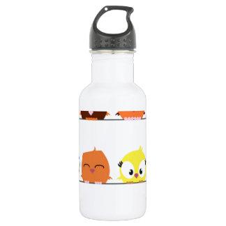Cutest Little Birds Stainless Steel Water Bottle