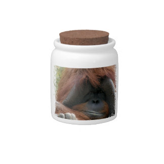 Cutest Orangutan Photo Ever Candy Jars