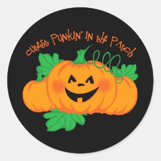 Cutest Punkin' Patch Classic Round Sticker