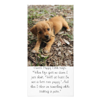 Cutest Puppy Ever Card