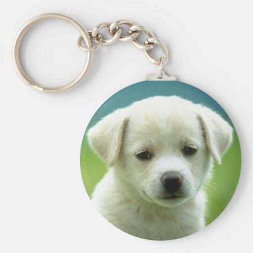 cutest puppy key chain