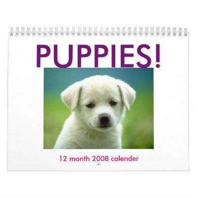 cutest puppy, PUPPIES!, 12 month 2008 calender Wall Calendars
