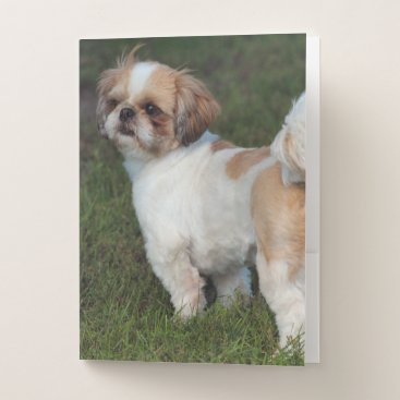 USA Themed Cutest  Shih Tzu Pocket Folder