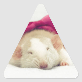 Cutest sleeping Rat with bow Triangle Sticker