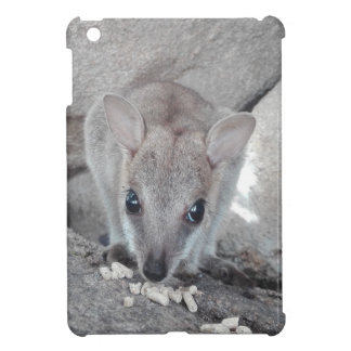 Cutest wallaby just staring at you and eating iPad mini case