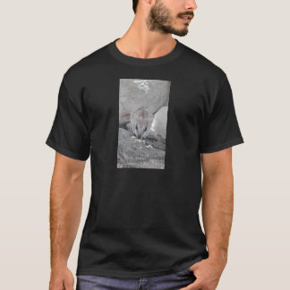 Cutest wallaby just staring at you and eating T-Shirt