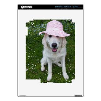 Cutest white dog on an ipad sticker template iPad 3 skin