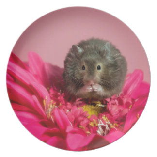 Cutie in a flower melamine plate