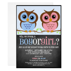 Cutie Owls Gender Reveal Party Invitation