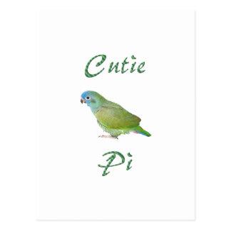 Cutie Pi Post Card
