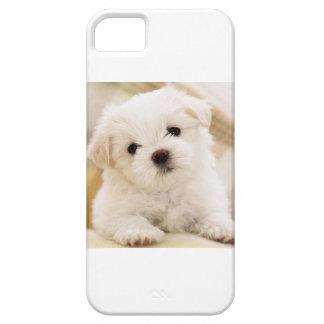 Cutie Pie Puppy iPhone 5 Cases
