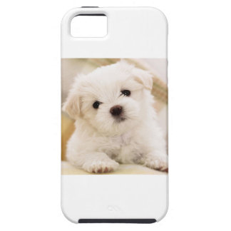 Cutie Pie Puppy iPhone 5 Covers