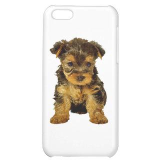 Cutie Pie, Yorkie Puppy Case For iPhone 5C