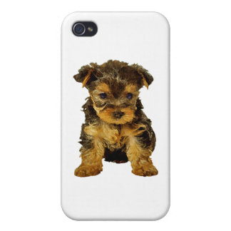 Cutie Pie, Yorkie Puppy iPhone 4 Covers