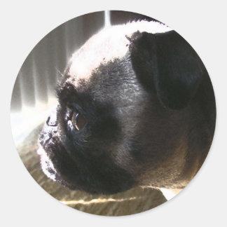 Cutie Pug Side Profile Round Stickers