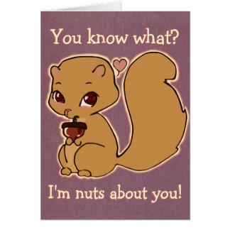 Cutie Squirrel Card
