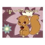 Cutie Squirrel Postcard