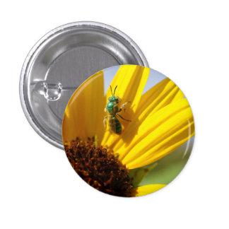 Cutter Bee on a Sunflower Button