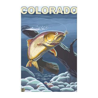 Cutthroat Trout FishingColorado Gallery Wrap Canvas