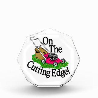 Cutting Edge Acrylic Award