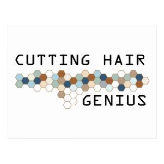 Cutting Hair Genius Postcard