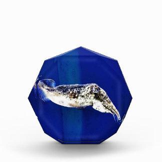 Cuttlefish Award