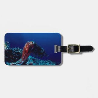 Cuttlefish Bag Tag